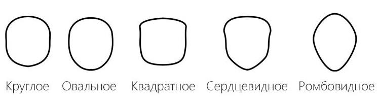 Ориентируйтесь на ширину лба относительно подбородка и на линию скул