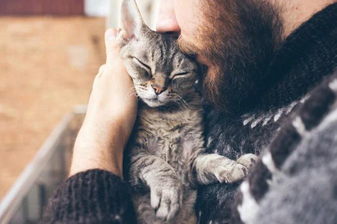 Миноксидил влияет не только людей. Он ядовит для кошек и может привести к смерти питомца даже при случайном контакте с шерстью животного