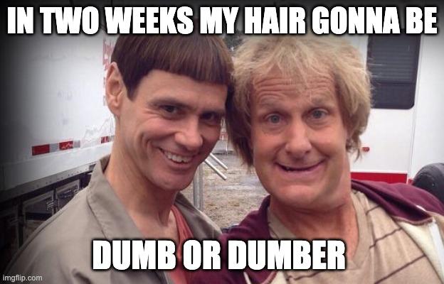 Чья стрижка вам ближе, Ллойда или Гарри?