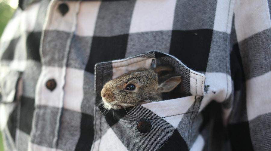 Обычно из переработанного материала шьют теплые куртки-рубашки или менее формальные модели, которые носят с хлопковыми футболками